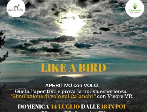 Domenica 14 Luglio 2019 – Like a Bird